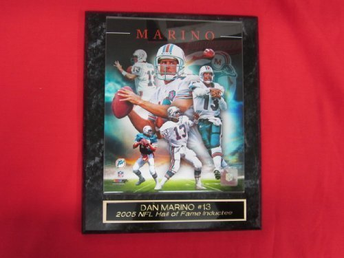 Dan Marino Miami Dolphins Collector Plaque w/8x10 CAREER COMPOSITE Photo Dan Marino Photograph
