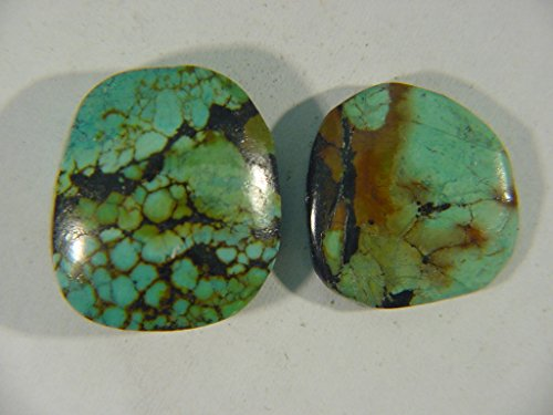 Genuine Natural Chinese Turquoise Lapidary Freeform Cabochon 9490C h