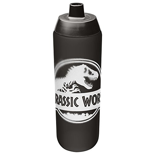 Zak Designs Jurassic World 2 24 oz. BPA Free Reusable Water Bottle, Jurassic World 2