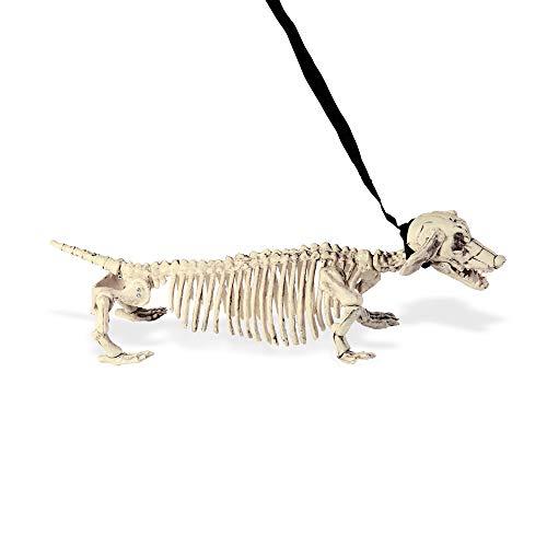 (Chien Squelette Luxe Halloween (55)