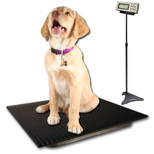 ZIEIS | 150 Lb. Capacity | Large Pet Series - Digital Dog Scale | TT-P150-DURA1916-LCD | 19'' X 16'' BigTop Dura Platform | TuffTop Cover | Adjustable LCD Stand | 0.1 Lb. Accuracy by ZIEIS
