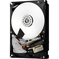 HGST Ultrastar 7K6000 HUS726060AL4214 6 TB 3.5 Internal Hard Drive - SAS - 7200 rpm - 128 MB Buffer - 0F22810