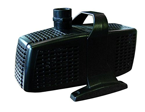 gartenpumpe kaufen affordable benzin motorpumpe. Black Bedroom Furniture Sets. Home Design Ideas