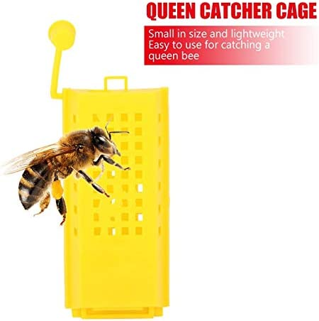 Beekeeping Rearing Cup Kit,Plastic Queen Bee Cages Transporting Catcher Beekeeper Beekeeping Tool Vobor Queen Cage 10Pcs