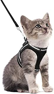rabbitgoo Cat Harness and Leash Set for Walking Escape Proof, Adjustable Soft Kittens Vest with Reflective Str