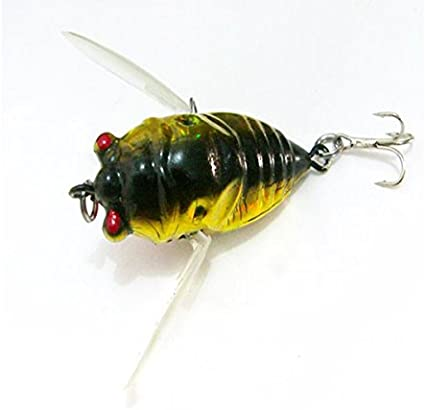 Fishing - Cicada Fishing Lures Lure Freshwater Bass Gear Tackle Jackall Pompadour Lake - for - 1PCs: Amazon.ca: Tools & Home Improvement