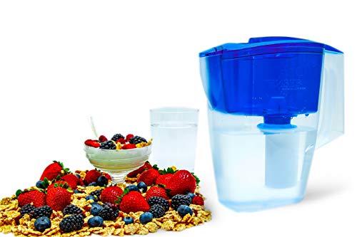 GEYSER Jarra con Filtro purificador de Agua Alpha (Azul): Amazon.es: Hogar