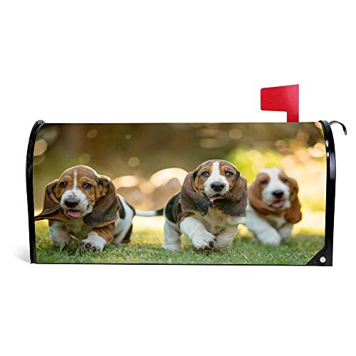 VinMea Three Basset Hound Running On The Meadow Magnetic Mailbox Cover Home Garden Decorations 22.6 X 18.7 Inches