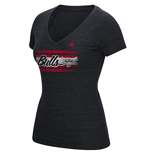 Chicago Bulls Official T-shirt - NBA Chicago Bulls Women's Woodgrain Stripe Tri-Blend V-Neck Tee, Large, Black Heathered