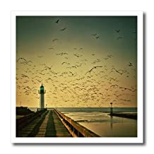 Florene - Landscape - Print of Lighthouse At Sunset With Flock Of Birds - Iron on Heat Transfers - 6x6 Iron on Heat Transfer for White Material - ht_195005_2