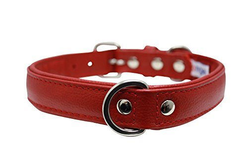 """Leather Dog Collar, Padded, Double Ply, 22"""" x 1"""", Red, Leather (Alpine) Boxer, Retriever, Pit bull Terrier"""