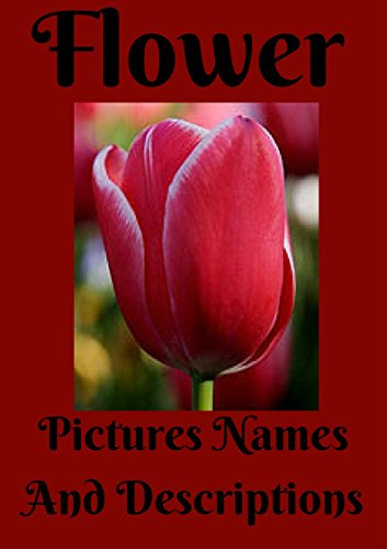 Flower Pictures Names And Descriptions.: Flower pictures names and descriptions. flower care, annual flowers, bulb flowers, orchids flowers, perennials flowers, roses, wild flowers, organtic flowers.