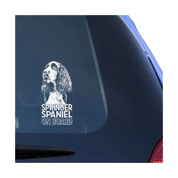 Springer Spaniel Clear Vinyl Decal Sticker for Window, English Dog Sign Art Print Design 1