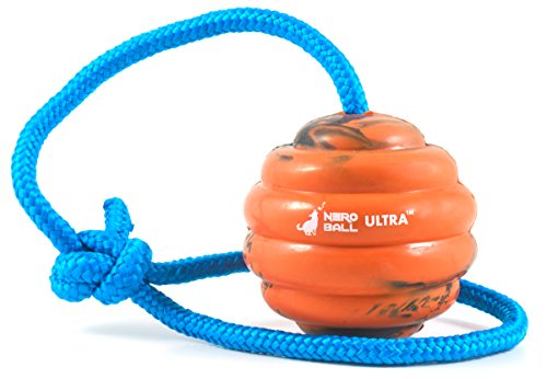 41yn9GjSlIL - Nero Ball Ultra Dog Training Ball On A Rope