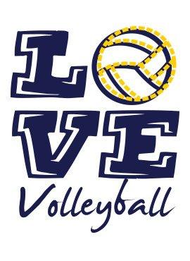Sports Katz Volleyball Capri Heather Gray Large