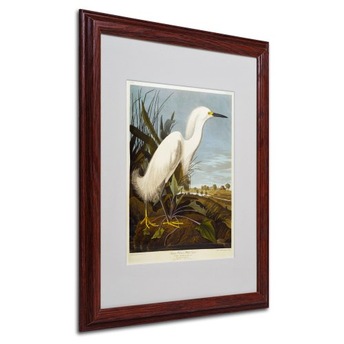Snowy Heron Matted Artwork by John James Audubon with Wood Frame, 16 by ()