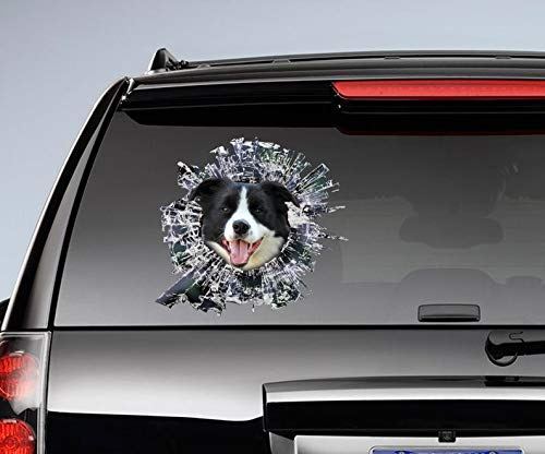 Black and White Border Collie Window Sticker, Dog Car Decal Vinyl Sticker for Cars, Windows, Walls, Fridge, Toilet and More - 15 Inch