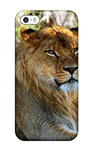 Bareetttt Case Cover For Iphone 5/5s - Retailer Packaging Lion Resting On Grass In Shade Protective Case