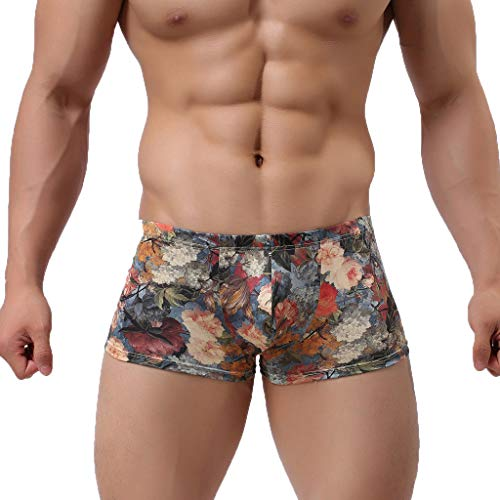 Fastbot mens underwear, Sexy Nylon Printed Shorts Pouch Flat Angle Underpants Blue