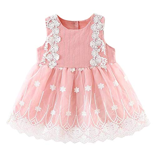 ZEFOTIM Baby Girls Dress,Infant Baby Girls Sleeveless Lace Flower Floral Tulle Princess Dress 3-24M