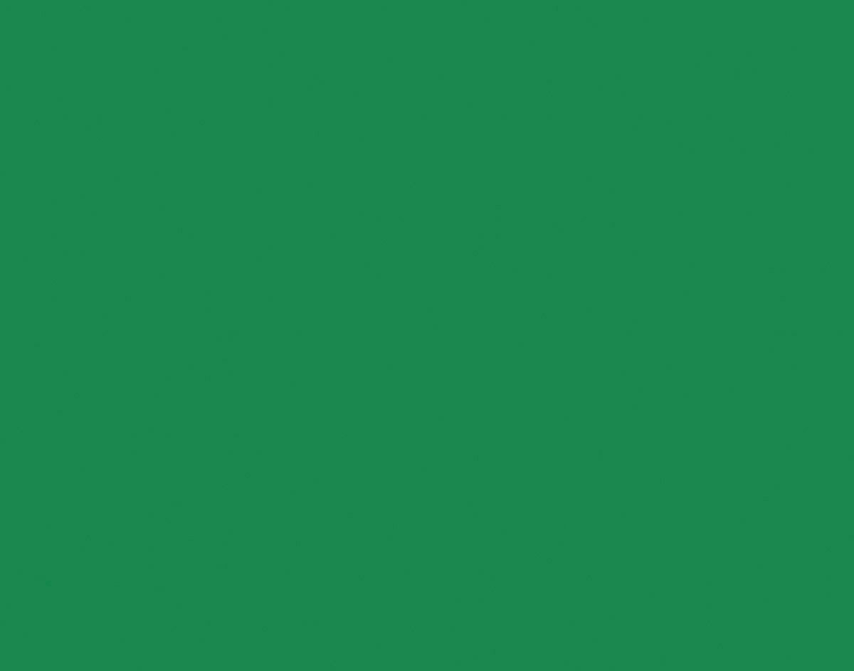 Peacock Railroad Board, 22''X28'', 25 Sheets,  Holiday Green