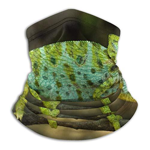 Chameleon Green Reptile Men...