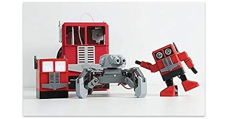 C.W.EURJ Impresora 3D para niños (Totalmente ensamblada) CR-100 ...