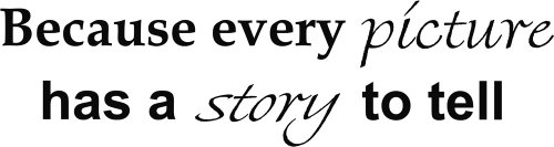 Because Every Picture Has a Story to Tell Vinyl Wall Quotes - Pictures Dolce Gabbana