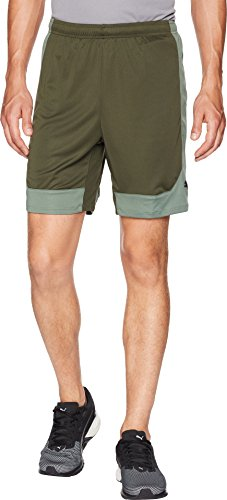 PUMA  Men's ftblNXT Shorts Forest Night/Laurel Wreath Large 6