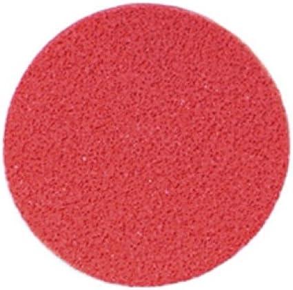 Graftobian Round Cream Makeup Sponge (1/pack) by Graftobian: Amazon.es: Belleza