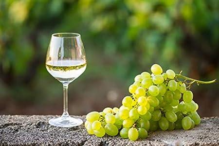Bag in Box 15L Vino Tinto Recomendado - Leyenda del Páramo - (Equivalente a 20 Botellas de 750 ml) - Caja de vino tinto - Con grifo para servirlo cómodamente