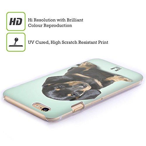 Head Case Designs Cucciolo Di Bassotto Seduto Razze Famose Di Cani Cover Retro Rigida per Apple iPhone 7 / 8