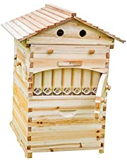 LANGLANG automatico Flow alveare, miele Fow Beehive casa con 7pz flusso cornici