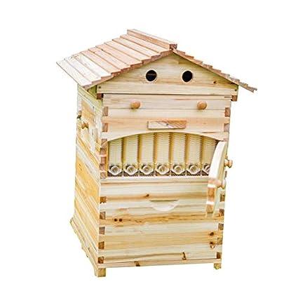 Colmena de abeja de flujo automático, casa de abejas de miel con 7 marcos de flujo