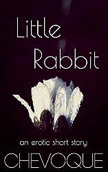 little rabbit (Undisclosed Desires Book 2)