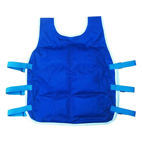 (blue--net Summer Cooling Vest with 24PCS Ice Packs and 2 Insulated Bag, Summer ICY Cooling Vest Heat Resistant Apron for Men and Women, Outdoor Sports Cool Vest for Fishing,Cycling,Running,Cooking )
