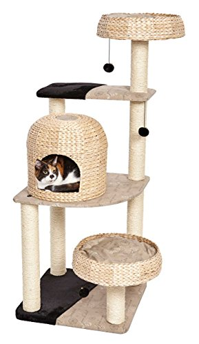 (MidWest Homes for Pets Cat Tree | Biscayne Cat Furniture, 5-Tier Cat Tree w/Sisal Wrapped Support Scratching Posts & High Cat Look-Out Perch, Woven Rattan & Script, Large Cat Tree)