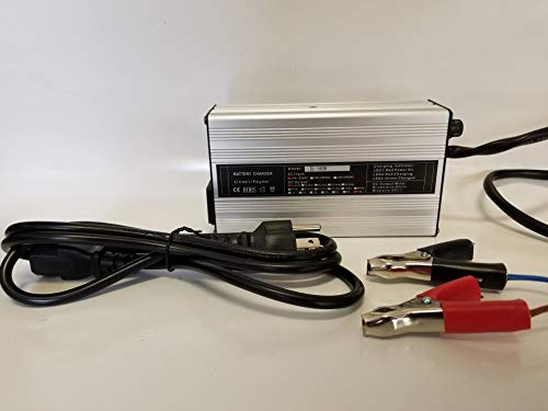 10A Lithium Iron Phosphate Battery Charger