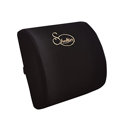 Sheltin Memory Foam Lumbar Support Back Pillow with 3D Breathable Mesh for Ease Lower Back Pain - Office Chair and Car Seat Back Cushion - Black