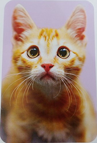 Happy Birthday Glamourpuss Greeting Card w/ Kitty Cat
