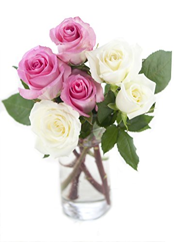 Bouquet of Long Stemmed Pink and White Roses (Half Dozen) - With Vase (Long White Rose Bouquet Stemmed)