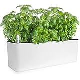 GrowLED Self Watering Planter Pots Window Box Indoor Home Garden Modern Decorative Planter Pot for All Indoor Plants, White(1