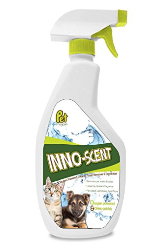 pet-magasins-inno-scent-oxygen-powered-cleaner-for-pet-stains-and-odors-22oz