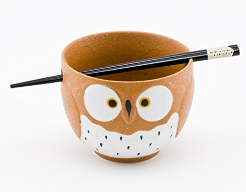Cute Owl Japanese Ramen Udon Noodle Bowl with Chopsticks Gift Set 5 Inch Diameter (Brown) by Hinomaru Collection