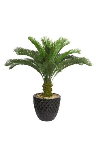 Laura Ashley VHX111205 54-Inch Cycas Palm Tree in 16-Inch Fiber Stone Planter