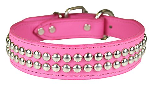 (OmniPet Dome Studded Signature Leather Dog Collar, Pink, 1.25
