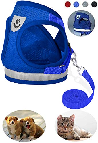GAUTERF Dog and Cat Universal Harness with Leash Set, Escape Proof Cat Harnesses - Adjustable Reflective Soft Mesh Corduroy Dog Harnesses - Best Pet Supplies (Small, Blue)