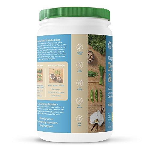BulkSupplements Garcinia Cambogia 60 HCA Powder 500 grams