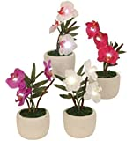 Moderno artificiale fiori orchidea altezza illuminazione led 16 17 cm