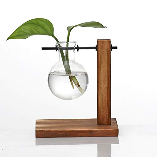Dergo ☀ Table Desk Bulb Glass Hydroponic Vase Flower Plant Pot Wooden Tray (B) (Vases Clear Discount)
